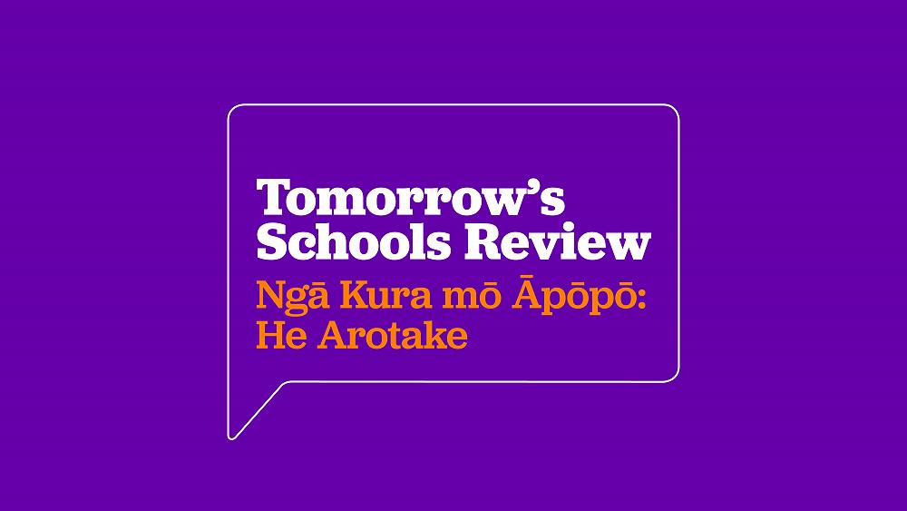 Tomorrow's Schools Review