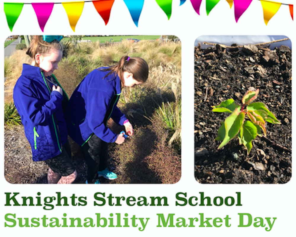 KSS Sustainability Market Day